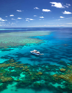 Great barrier reef Aerial view - Cairns