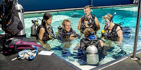 Diving courses open water prodive cairns