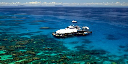 The Great Barrier Reef pontoon diving