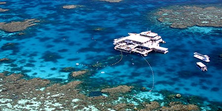 The Great Barrier Reef pontoon diving in Cairns Australia